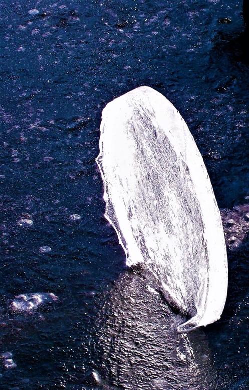 ijs schijf  - Gtjs.AJ62