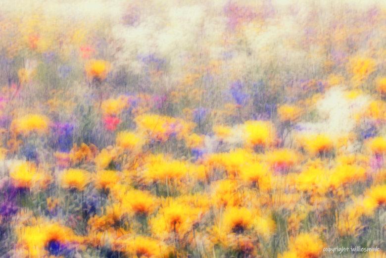 Moving ! - Met de camera heel klein bewogen de sluitertijd wat langer zodat je beweging in de foto ziet .<br /> Bijna een Vincent van Gogh !!<br />