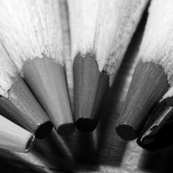 kleur in zwart-wit