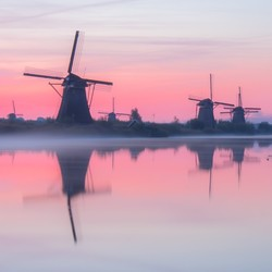 Reflection perfection on a misty pink morning