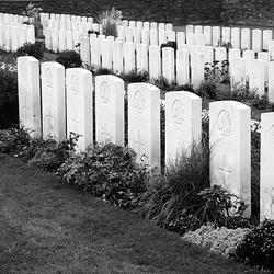 In Flanders Fields (10).jpg