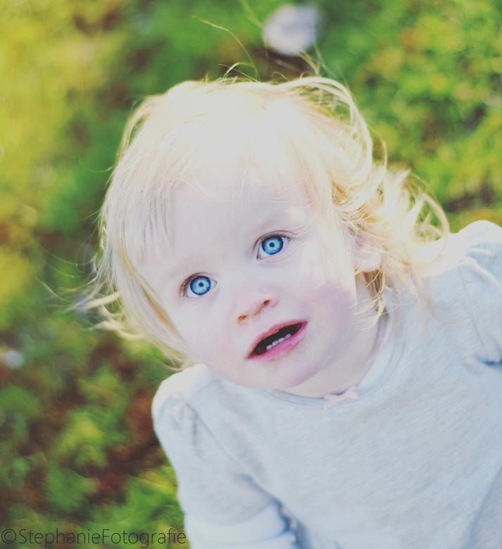 IMG_1034 - Wat een prachtige ogen heeft deze dame