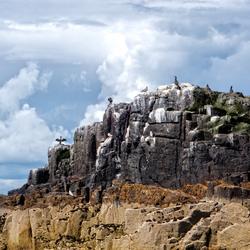 Farne eilanden 1