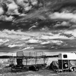 Agrarische scene zwart-wit