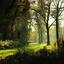 Enchanted (groot zien)