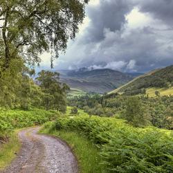 Groen Schotland