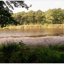 Limburgse natuur
