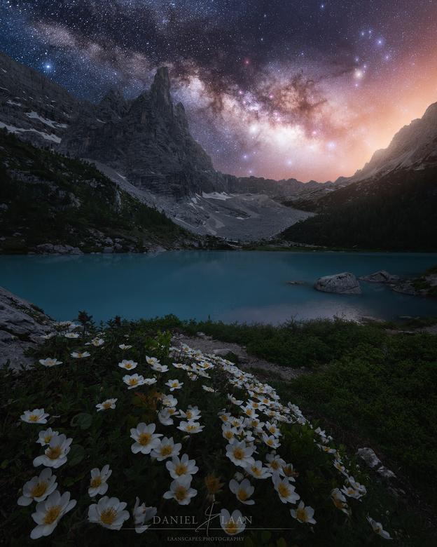 Expected Arrival - Met 100 miljard sterren alleen al in onze eigen Melkweg, is het je niet lastig voor te stellen dat onze planeet misschien niet de e