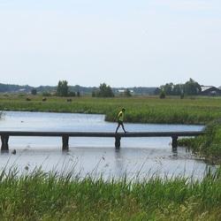 Waterlinie van Friesland.