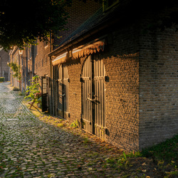 Rozemarijntje te Willemstad