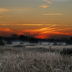 zonsopgang Malpie