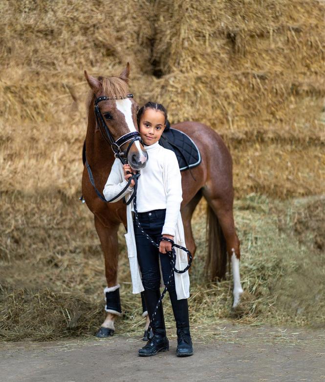 portret pony -