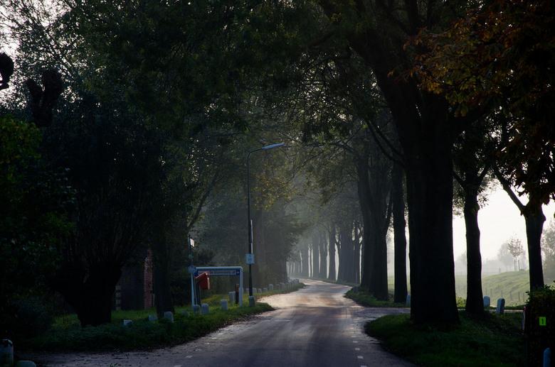 Weggetje - Een boeren weggetje in de mist