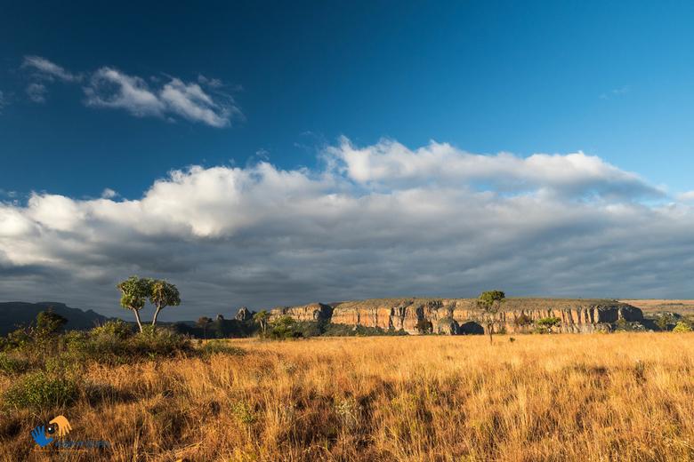 Omgeving Blyde River Canyon (Zuid Afrika) in de late namiddag - In de late namiddag zet de zon het landschap rondom de Blyde River Canyon in prachtig