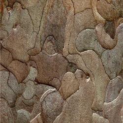 Een plantaardig mozaiek