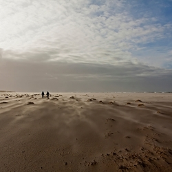 Maanlandschap Texel
