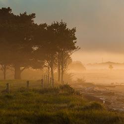 Zonsondergang met mist