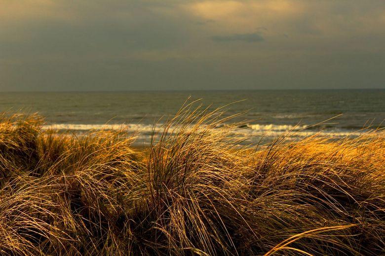 Uitzicht op zee - Uitzicht vanuit de duinen op het strand