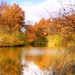 Herfst in Emmeloord