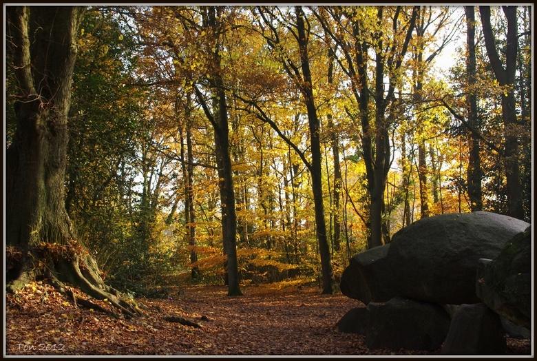 Hunebed in herfstbos