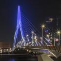 Zoomavond Rotterdam 2017
