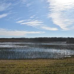 Zwanenwater / Callantsoog