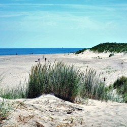 Strand en duin Texel (paal 32)