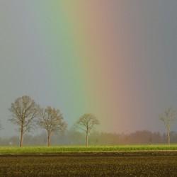 Ingezoomd op de regenboog