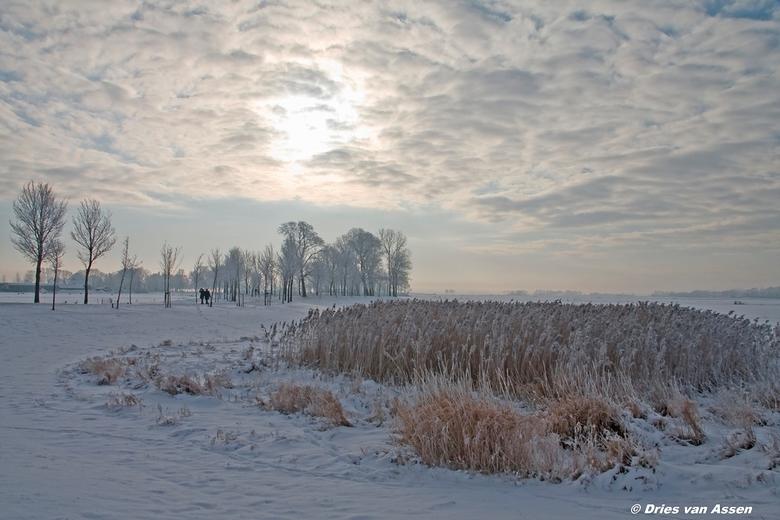 Zwartendijk - Winter in Nederland