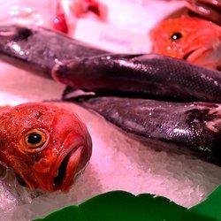 Vis en Groente markt