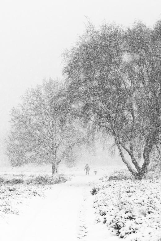 Voor wie denkt dat het nu koud is... - ...denk nog maar even terug aan 10 december vorig jaar... M'n camera overleefde het ternauwernood!