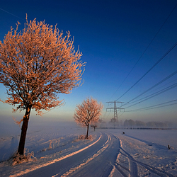 winter lijnen