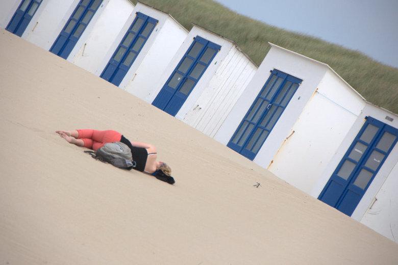 strandhuisje - strandhuisjes op Texel, met een rustende gast.