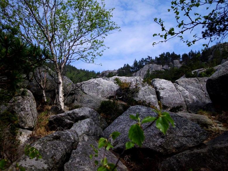 Preikestolen - het rotsachtige gebergte, in Noorwegen