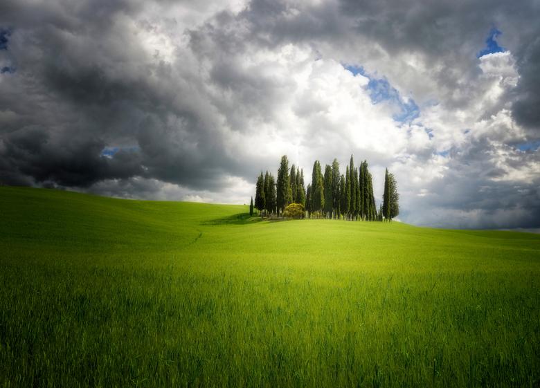 """Val d'Orcia - De bekende cypresses in de Val d&#039;Orcia van Toscane. Groot is mooier <img  src=""""/images/smileys/wilt.png""""/> Fijne dag allemaal. Groe"""