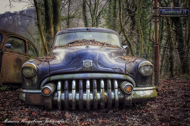 The Car