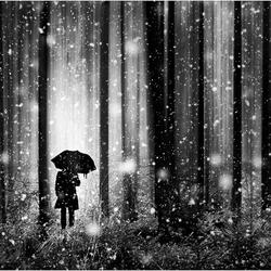 umbrella_man_get_cover!