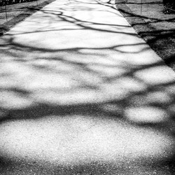 Spel van licht en schaduw