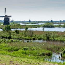 Hoe Hollands wil je het hebben.