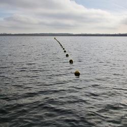 Oostvoornes meer 4