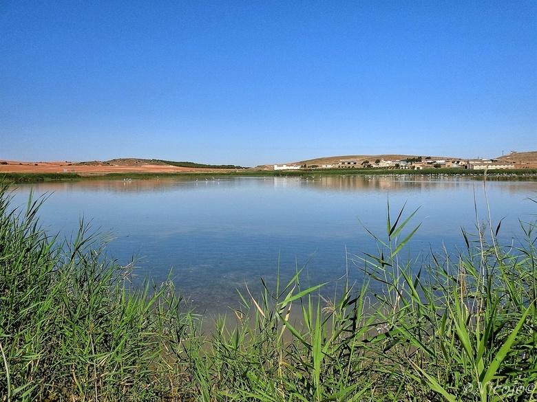 Laguna salada de Petrola. - De zoutlagune, 150 km landinwaarts vanaf Alicante, heeft een zoutgehalte hoger dan de zee, normaal staat het hier vol met