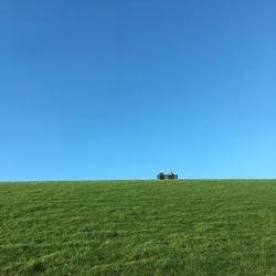Statler en Waldorf gesignaleerd in Friesland