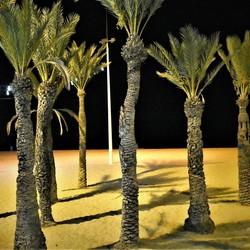 Benidorm beach by night