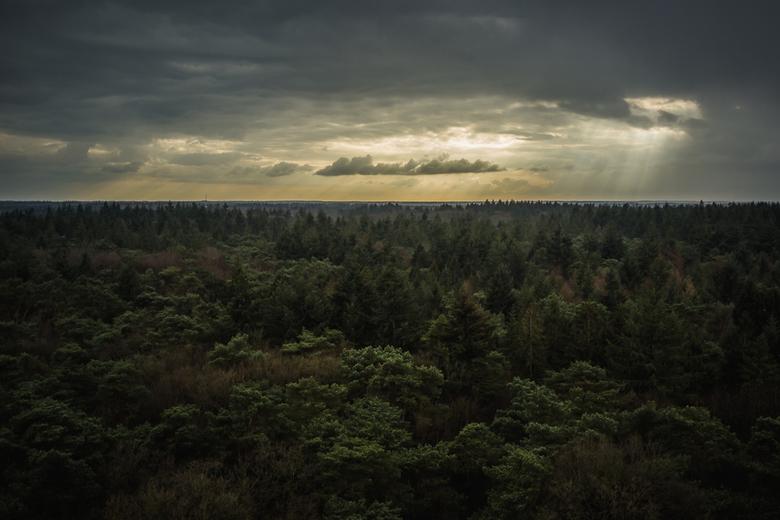 Uitzicht - Uitzicht over het Drents Friese Wold vanaf de bosbergtoren te Appelscha. Het had net geregend en de zon brak door het wolkendek heen. Foto
