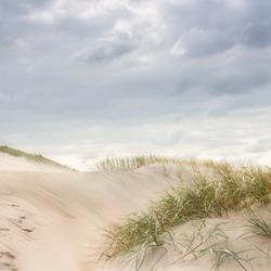 De duinen 4