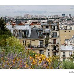 Uitzicht op de daken van Parijs