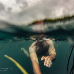Wild zwemmen onder een grijze hemel
