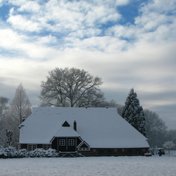Winter 2010 in Driene
