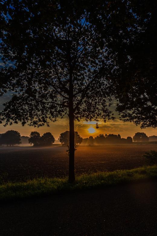 De zon in de mist - Deze een paar meter verderop zo schilderachtig mooi