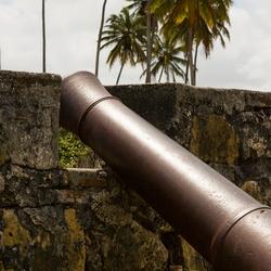 Kanon bij Fort Orange